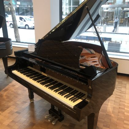 /pianos/new/B198611P-request