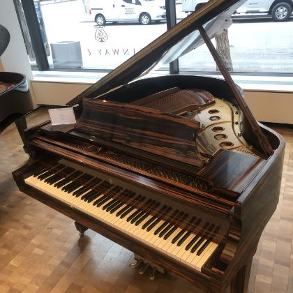 /pianos/used/605890-request